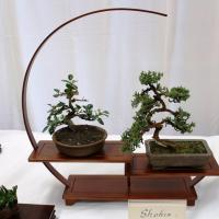 Pearl City Bonsai Club's Annual Bonsai Exhibit and Plant Fair (5.4.19)