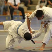 Photo Gallery 1: Pearl City  at the 2014 OIA Judo Individual Championships (4/28