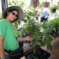 Urban Garden Center in Pearl City - Second Saturday at the Garden (9/13/2014)