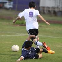 Pearl City beats Waianae 7-2 to complete OIA Western Division regular season (1/