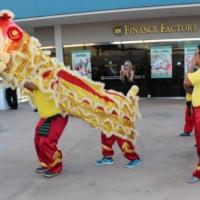 Chinese New Year celebration at the Pearl City Shopping Center (2/12/2016)