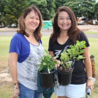 Hawaiian Electric Arbor Day Tree Giveaway at the Urban Garden Center in Pearl Ci