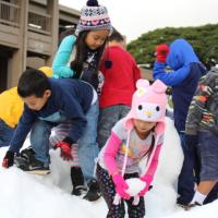 True to the forecast, 12 tons of snow dumps on Momilani Elementary (12/1/2016)
