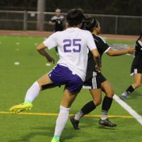 Pearl City advances to state championship quarterfinals with 2-0 opening round w