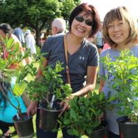 Arbor Day Plant a free tree giveaway at the Urban Garden Center in Pearl City (1