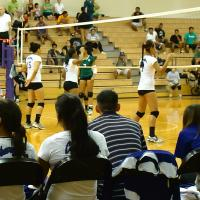 Photo of Pearl City victory over Aiea in OIA Girls Varsity Volleyball (8/28/10)