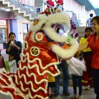 Chinese New Year Lion Dance Blessing at Pearl City Shopping Center  (2/4/11)